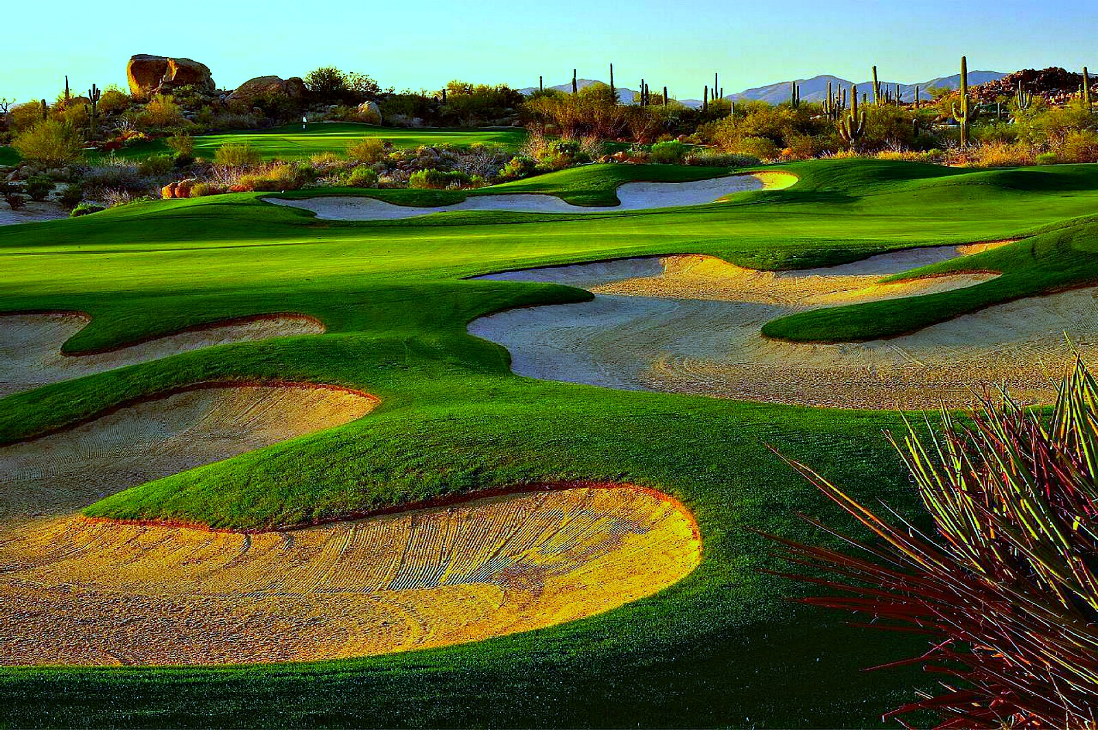 Troon-North - scottsdale