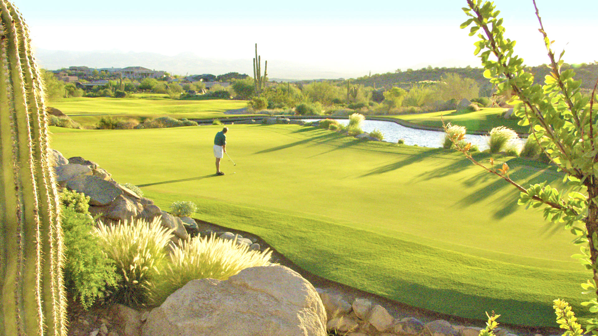 11-SunRidge-Canyon - scottsdale