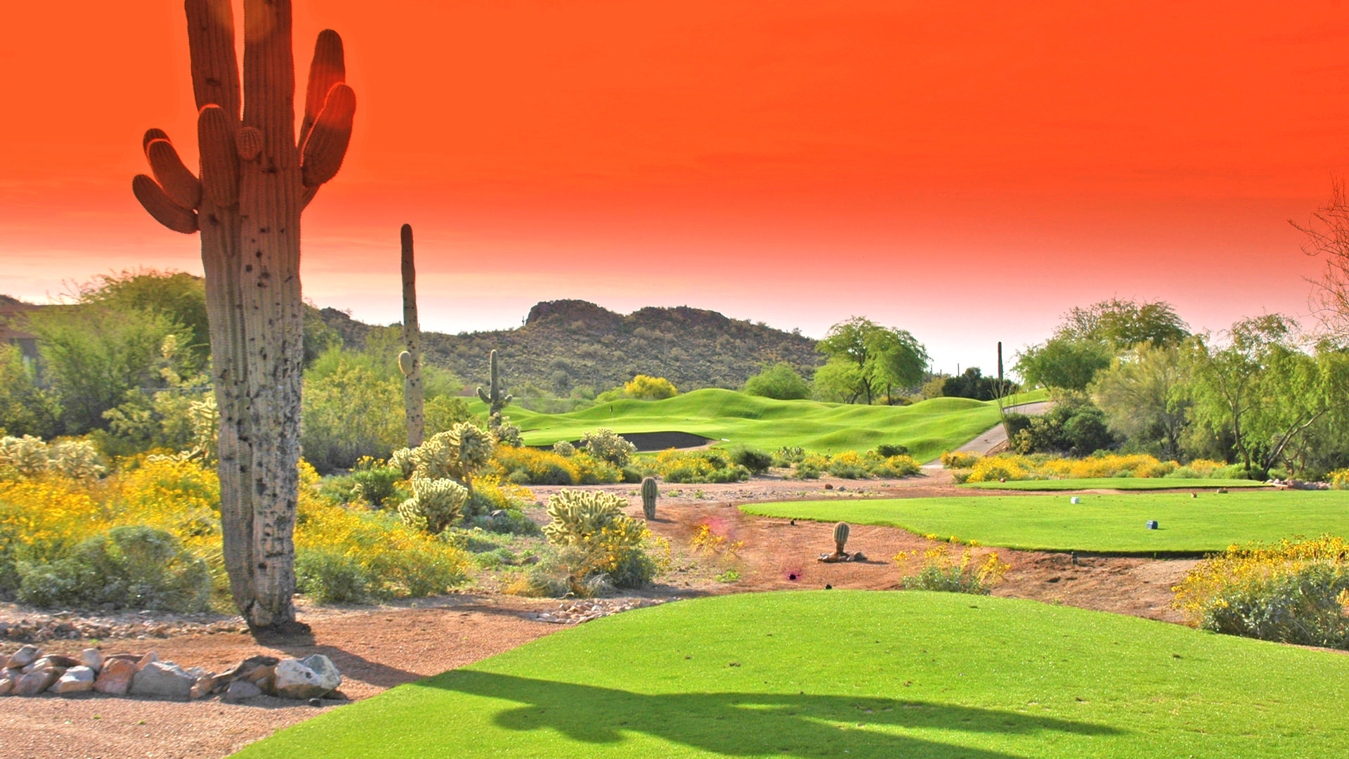 eaglemountain - scottsdale